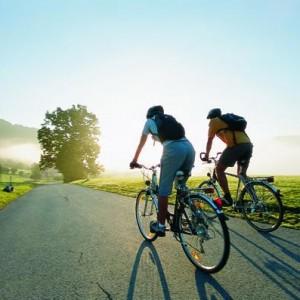 Прокат велосипедов Геленджик
