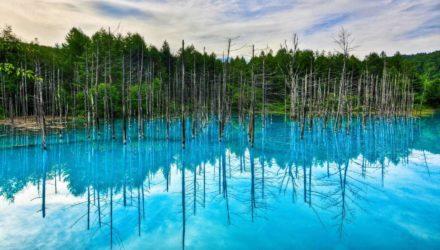 Голубой пруд Хоккайдо