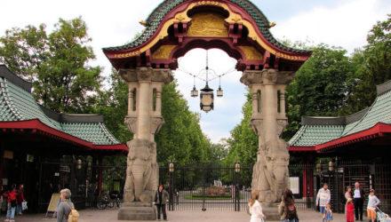 Поразительный Берлинский зоопарк