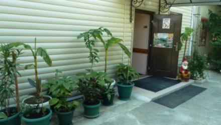 № 513 Геленджик, Бетта — Гостевой дом «РосМарин»